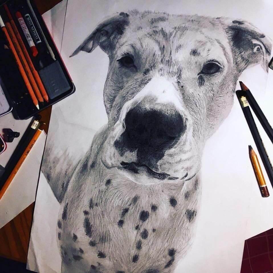 tetovanie psík