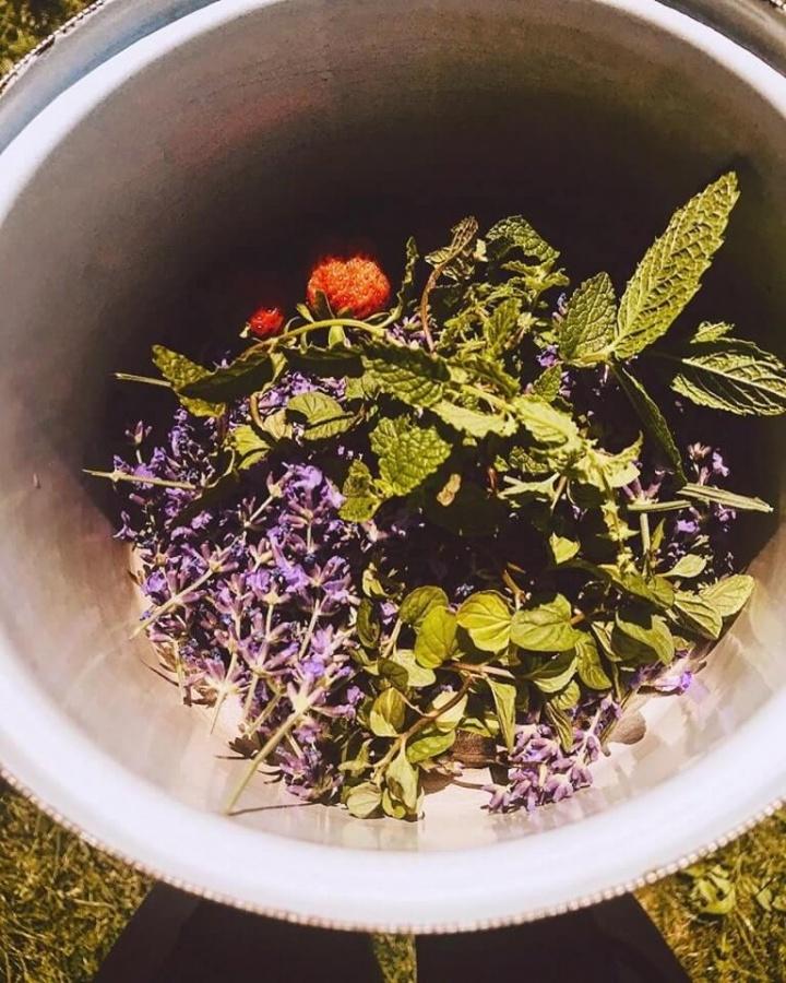 ingrediencie potrebné na levanduľový sirup